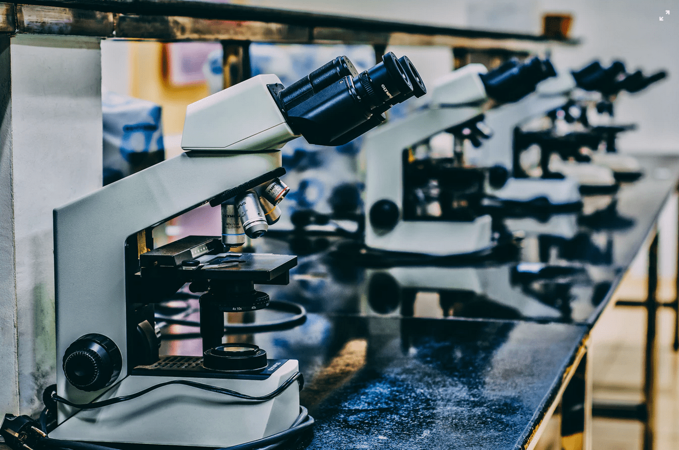 Table lined with microscopes