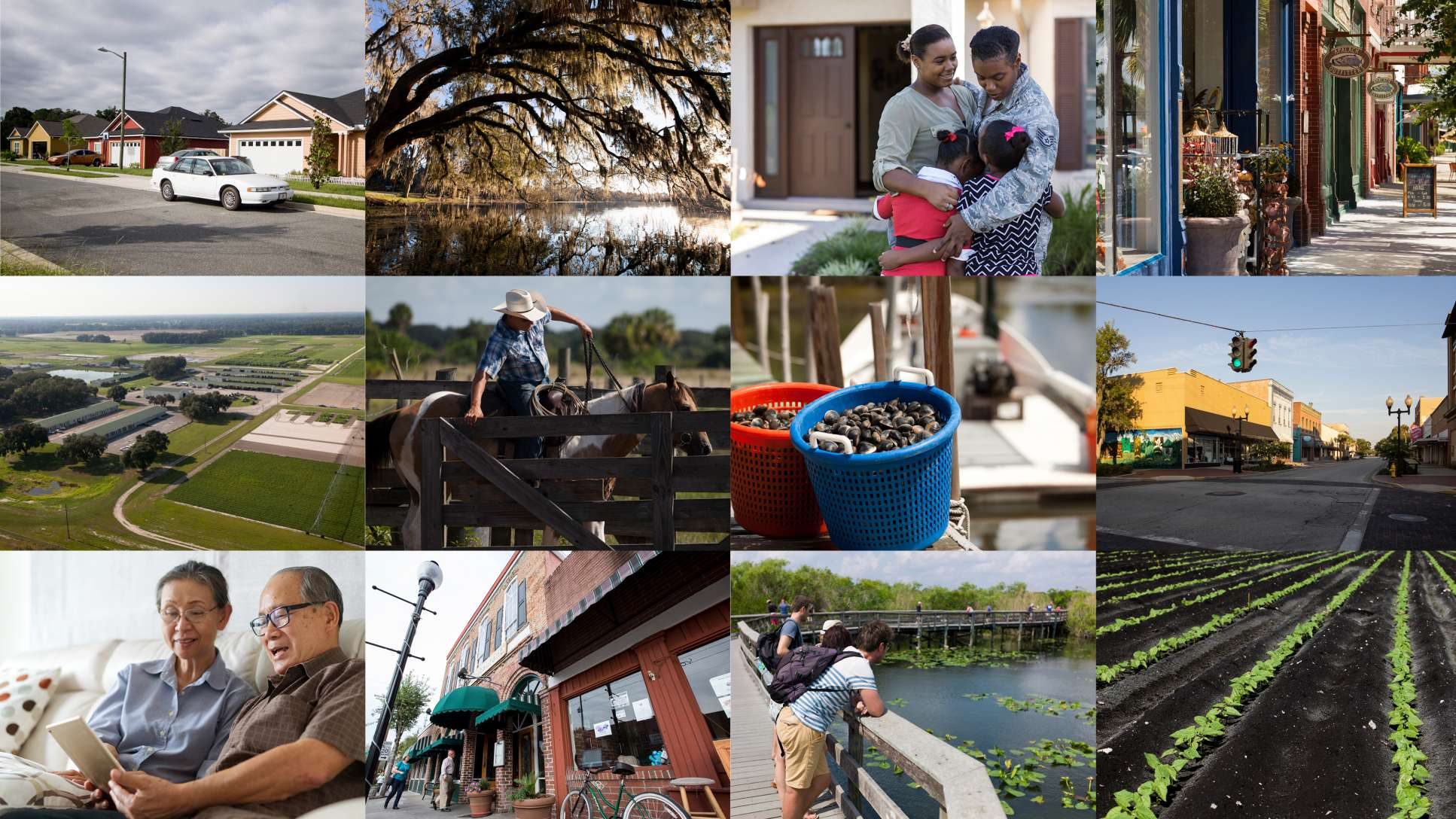 Catchment collage